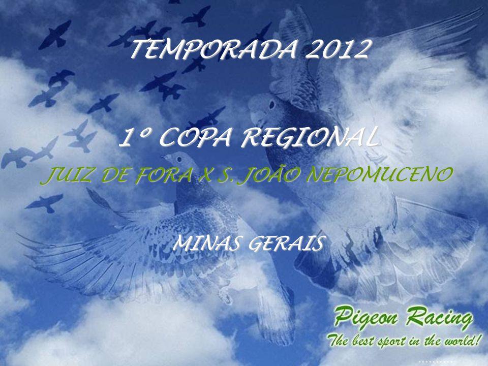 TEMPORADA 2012 1º COPA REGIONAL JUIZ DE FORA X S. JOÃO NEPOMUCENO MINAS GERAIS..........