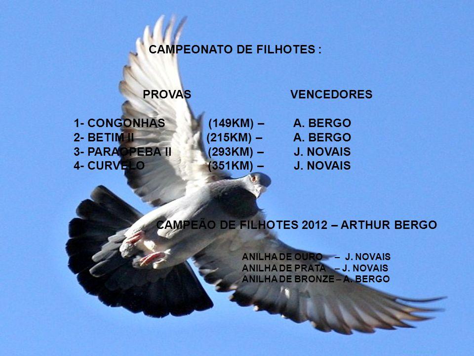 CAMPEONATO DE FILHOTES : PROVAS 1- CONGONHAS (149KM) – 2- BETIM II (215KM) – 3- PARAOPEBA II (293KM) – 4- CURVELO (351KM) – VENCEDORES A.