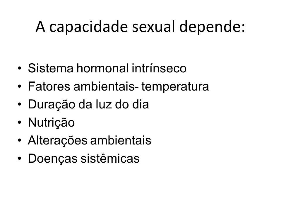 A capacidade sexual depende: Sistema hormonal intrínseco Fatores ambientais- temperatura Duração da luz do dia Nutrição Alterações ambientais Doenças sistêmicas