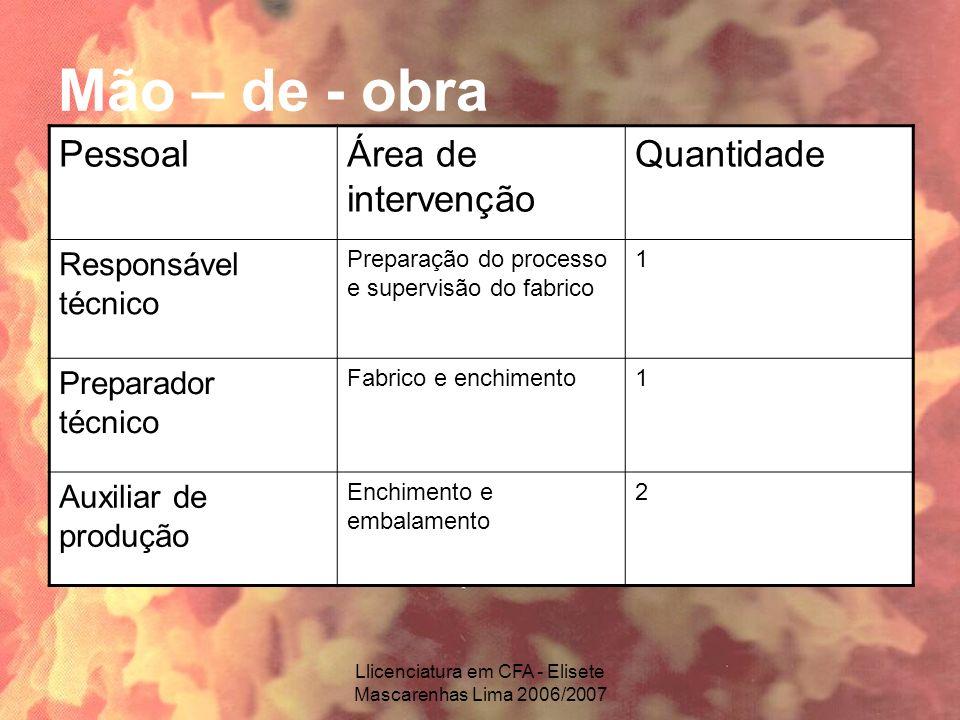 Llicenciatura em CFA - Elisete Mascarenhas Lima 2006/2007 Mão – de - obra PessoalÁrea de intervenção Quantidade Responsável técnico Preparação do proc