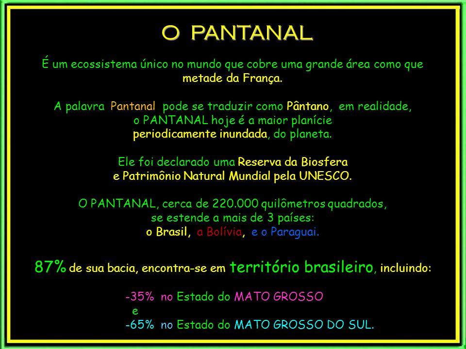 courtesy of Fazenda Barroco Alto