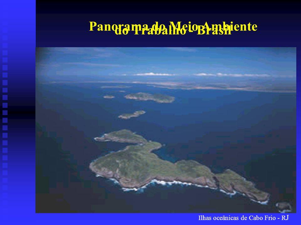 Ilhas oceânicas de Cabo Frio - R J Panorama do Meio Ambiente do Trabalho - Brasil