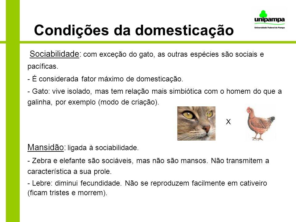 Condições da domesticação Sociabilidade: com exceção do gato, as outras espécies são sociais e pacíficas. - É considerada fator máximo de domesticação