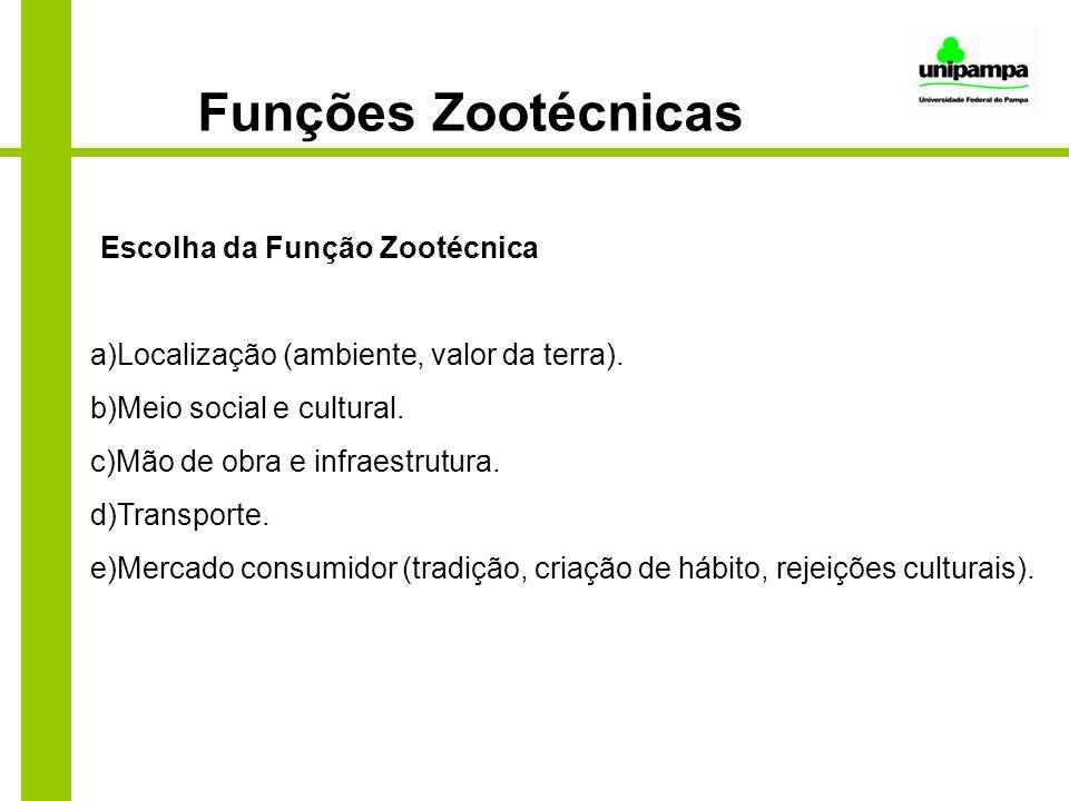 Funções Zootécnicas Escolha da Função Zootécnica a)Localização (ambiente, valor da terra). b)Meio social e cultural. c)Mão de obra e infraestrutura. d