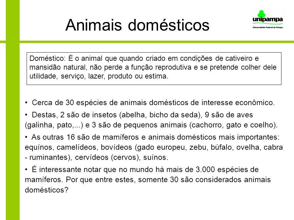 Animais domésticos Cerca de 30 espécies de animais domésticos de interesse econômico. Destas, 2 são de insetos (abelha, bicho da seda), 9 são de aves