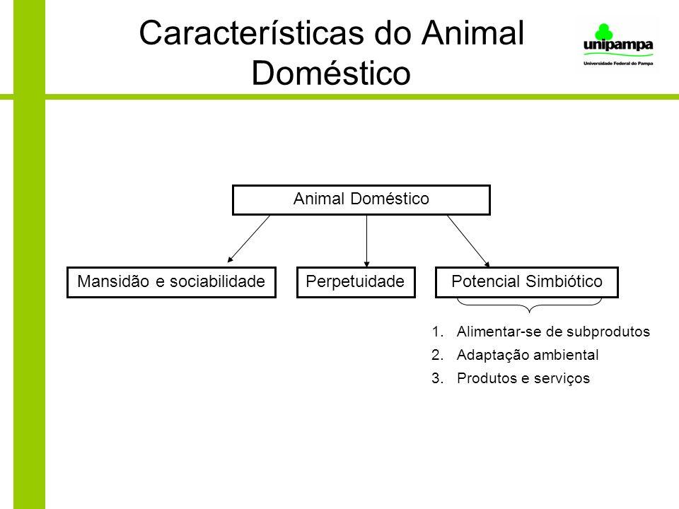 Características do Animal Doméstico Animal Doméstico Mansidão e sociabilidadePotencial SimbióticoPerpetuidade 1.Alimentar-se de subprodutos 2.Adaptaçã
