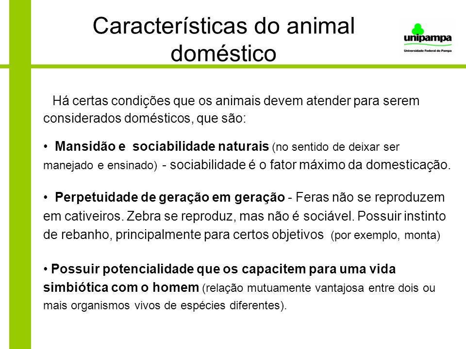 Características do animal doméstico Há certas condições que os animais devem atender para serem considerados domésticos, que são: Mansidão e sociabili