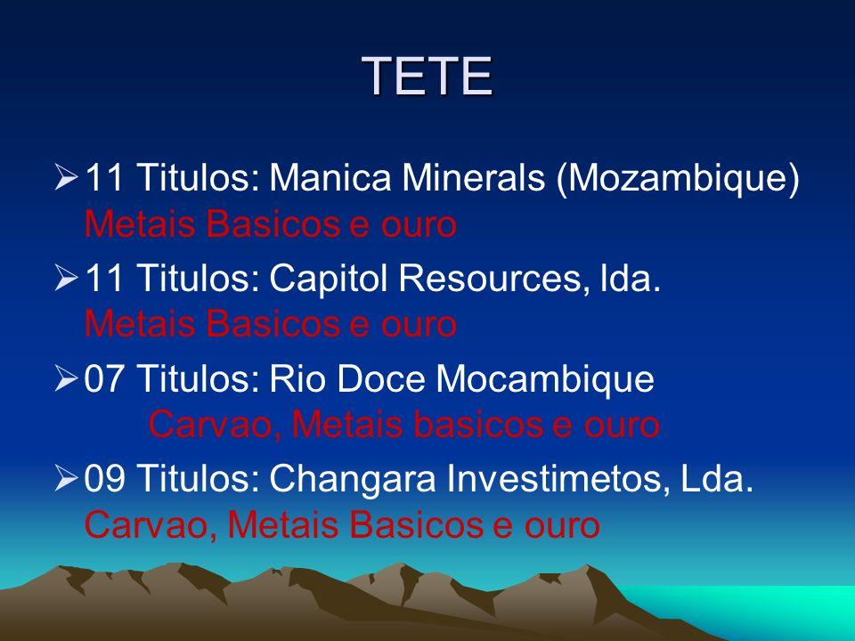 TETE 11 Titulos: Manica Minerals (Mozambique) Metais Basicos e ouro 11 Titulos: Capitol Resources, lda. Metais Basicos e ouro 07 Titulos: Rio Doce Moc