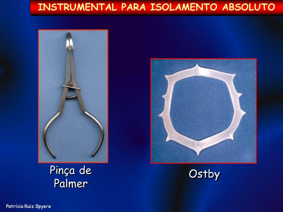 Patrícia Ruiz Spyere Pinça de Palmer Pinça de Palmer INSTRUMENTAL PARA ISOLAMENTO ABSOLUTO Ostby