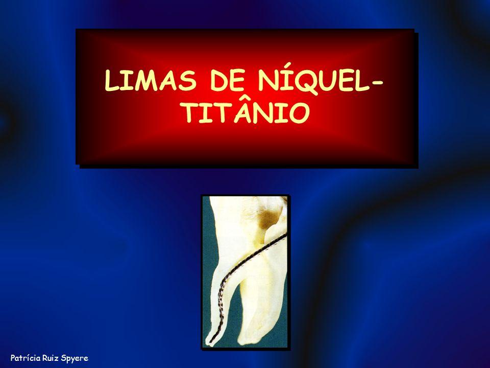 Patrícia Ruiz Spyere LIMAS DE NÍQUEL- TITÂNIO