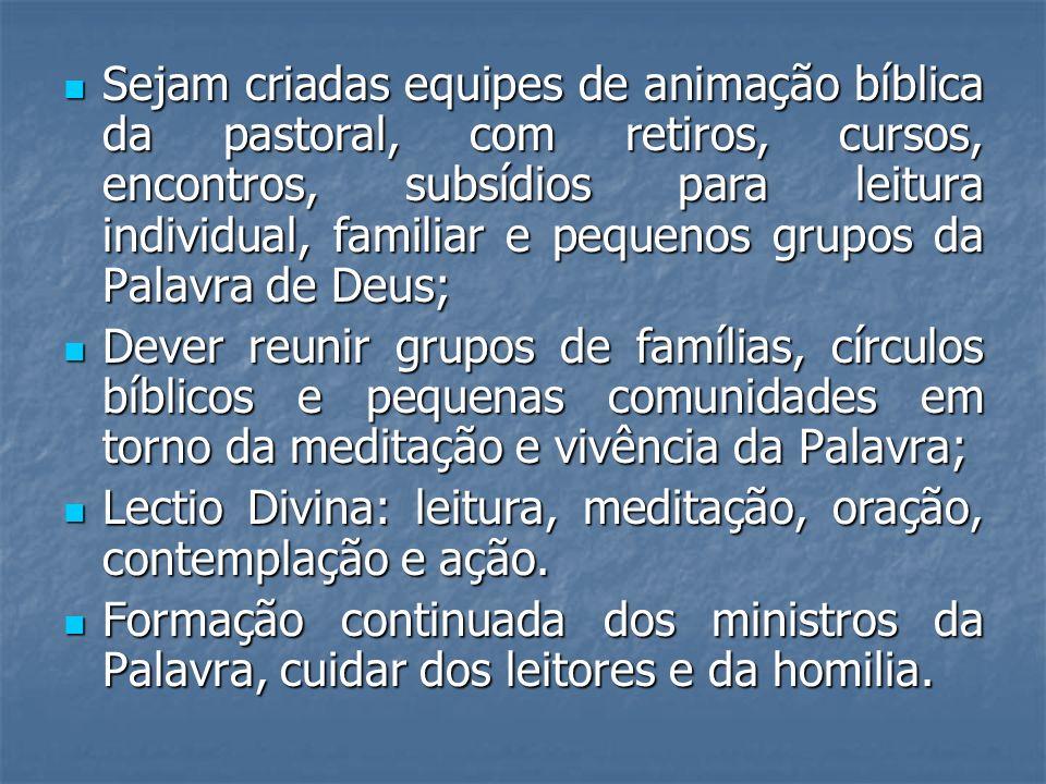 Sejam criadas equipes de animação bíblica da pastoral, com retiros, cursos, encontros, subsídios para leitura individual, familiar e pequenos grupos d