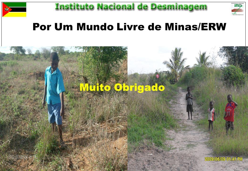 Maputo, 25 de Março de 201019 Por Um Mundo Livre de Minas/ERW Muito Obrigado