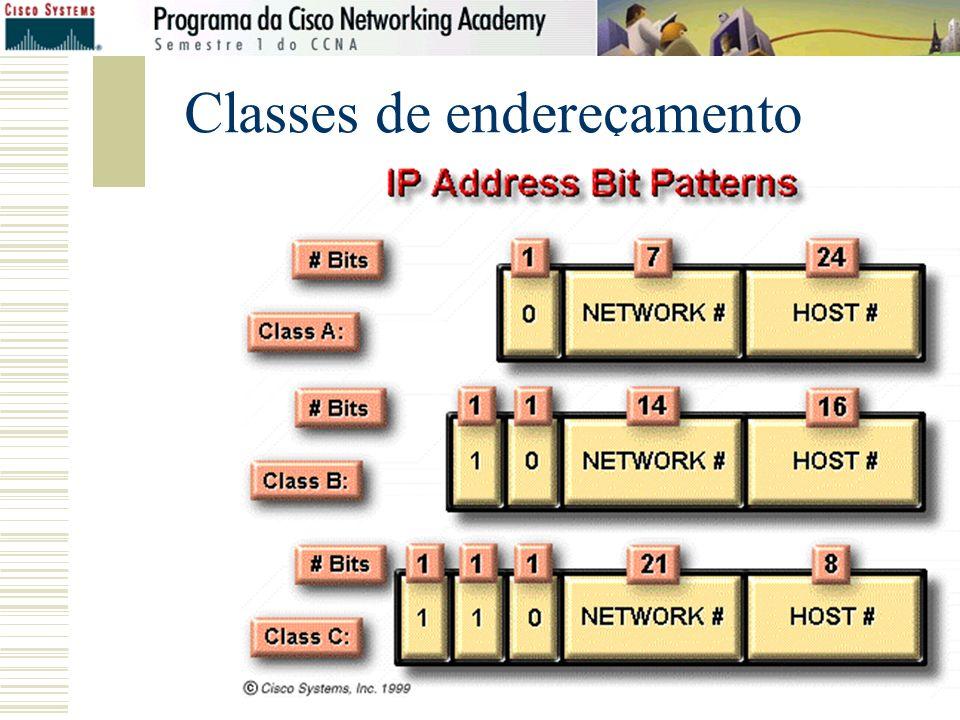 Prof: Henry Carlo Cabral – INEC 2009 Classes de endereçamento