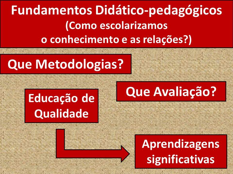 Fundamentos Didático-pedagógicos (Como escolarizamos o conhecimento e as relações?) Que Metodologias.