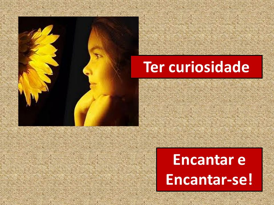 Encantar e Encantar-se! Ter curiosidade