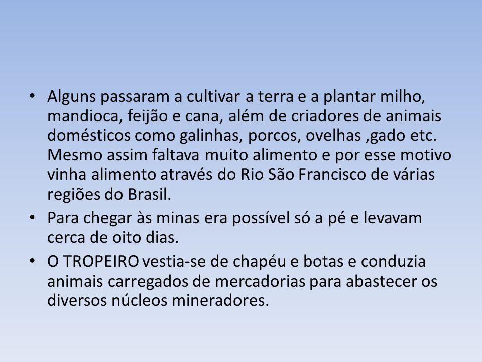 4.Conflitos em Torno das Minas e reorganização administrativa.
