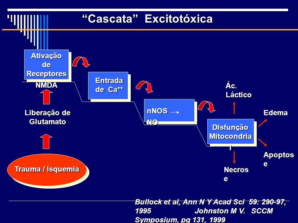 Cascata Excitotóxica Disfunção Mitocondria l nNOS NO Entrada de Ca ++ Ativação de Receptores NMDA Edema Ác. Láctico Apoptos e Necros e Trauma / Isquem