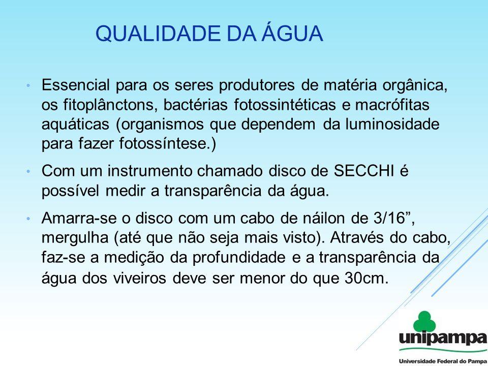 QUALIDADE DA ÁGUA Essencial para os seres produtores de matéria orgânica, os fitoplânctons, bactérias fotossintéticas e macrófitas aquáticas (organism