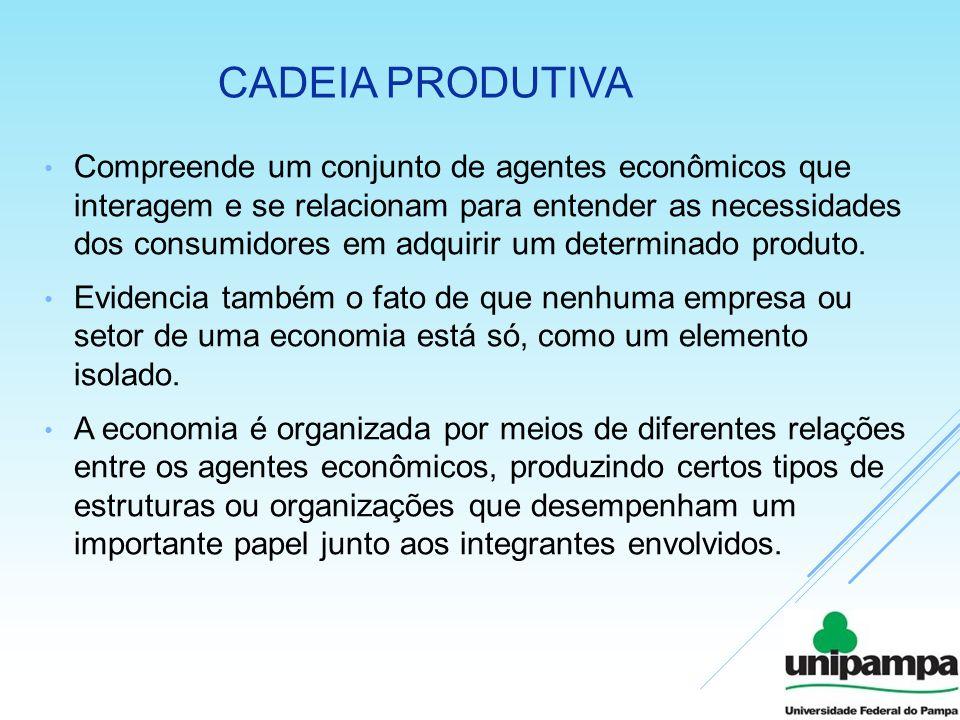 CADEIA PRODUTIVA Compreende um conjunto de agentes econômicos que interagem e se relacionam para entender as necessidades dos consumidores em adquirir