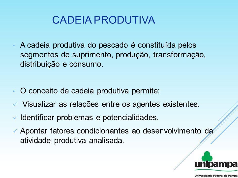 CADEIA PRODUTIVA A cadeia produtiva do pescado é constituída pelos segmentos de suprimento, produção, transformação, distribuição e consumo. O conceit