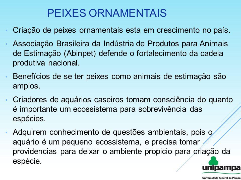 PEIXES ORNAMENTAIS Criação de peixes ornamentais esta em crescimento no país. Associação Brasileira da Indústria de Produtos para Animais de Estimação
