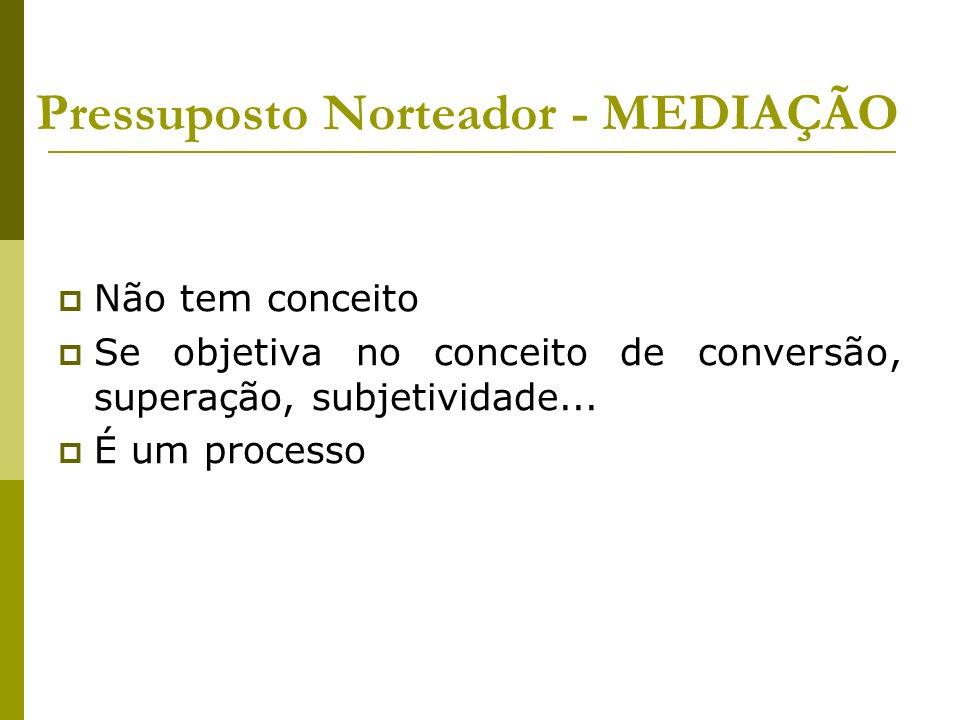 Pressuposto Norteador - MEDIAÇÃO Não tem conceito Se objetiva no conceito de conversão, superação, subjetividade... É um processo