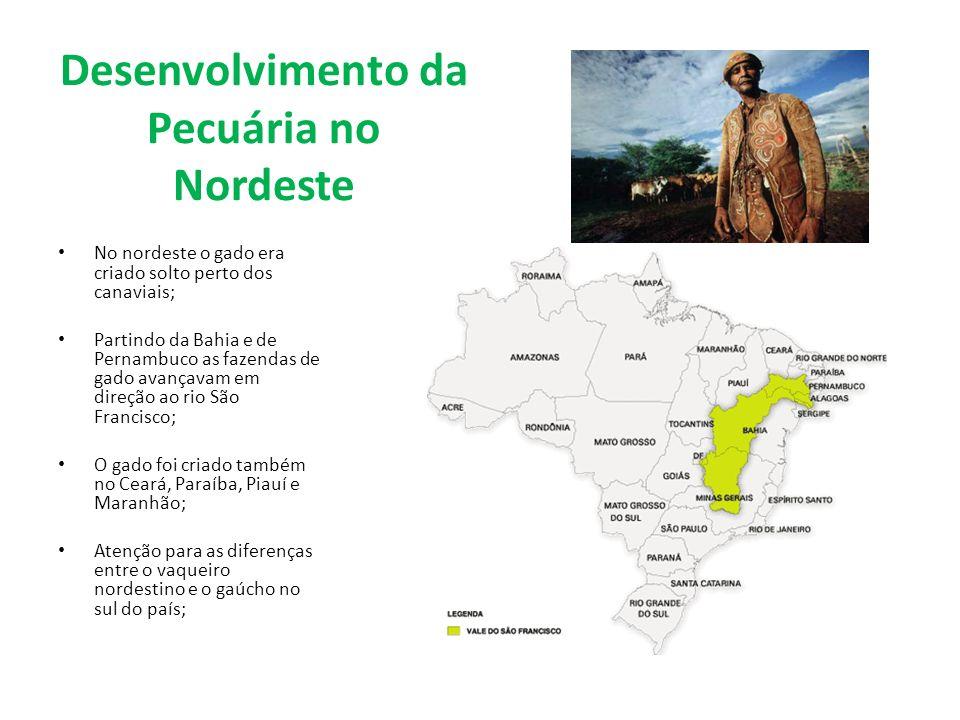 Desenvolvimento da Pecuária no Sul A pecuária no Rio Grande do Sul desenvolveu-se depois do NE, quando os portugueses começaram a ocupar a região; Mas, ao final do séc.
