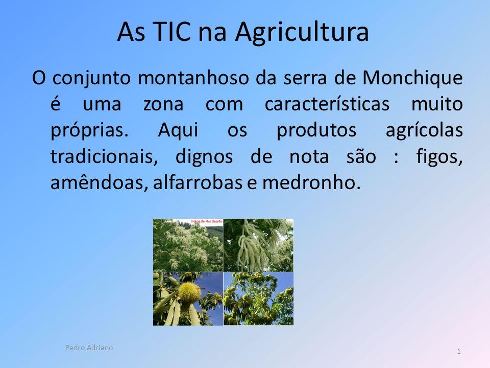 As TIC na Agricultura O conjunto montanhoso da serra de Monchique é uma zona com características muito próprias.