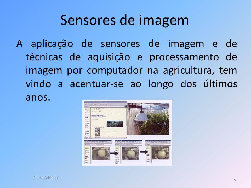 Sensores de imagem A aplicação de sensores de imagem e de técnicas de aquisição e processamento de imagem por computador na agricultura, tem vindo a acentuar-se ao longo dos últimos anos.