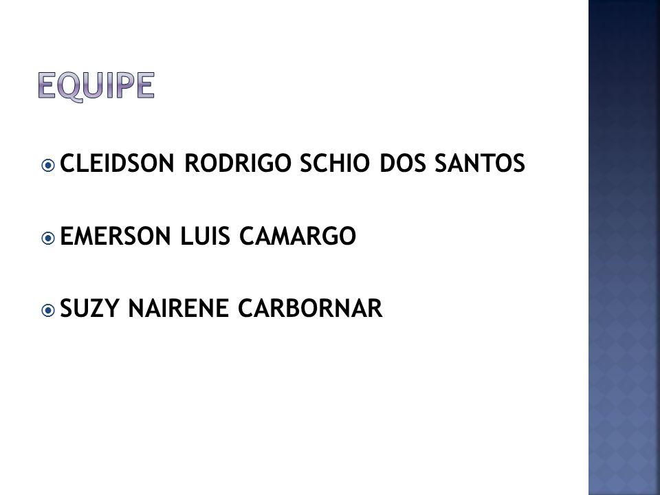 CLEIDSON RODRIGO SCHIO DOS SANTOS EMERSON LUIS CAMARGO SUZY NAIRENE CARBORNAR