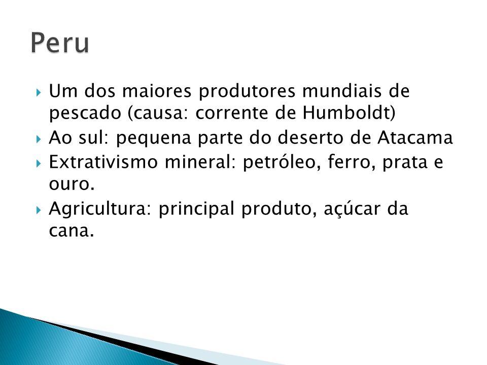 Um dos maiores produtores mundiais de pescado (causa: corrente de Humboldt) Ao sul: pequena parte do deserto de Atacama Extrativismo mineral: petróleo, ferro, prata e ouro.