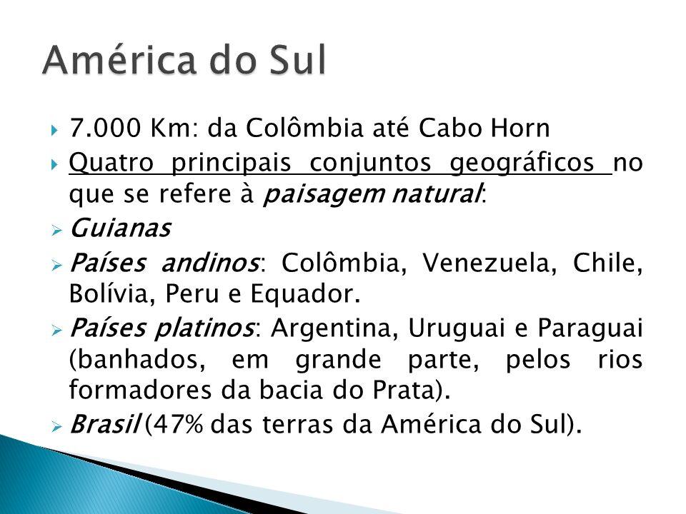 7.000 Km: da Colômbia até Cabo Horn Quatro principais conjuntos geográficos no que se refere à paisagem natural: Guianas Países andinos: Colômbia, Venezuela, Chile, Bolívia, Peru e Equador.