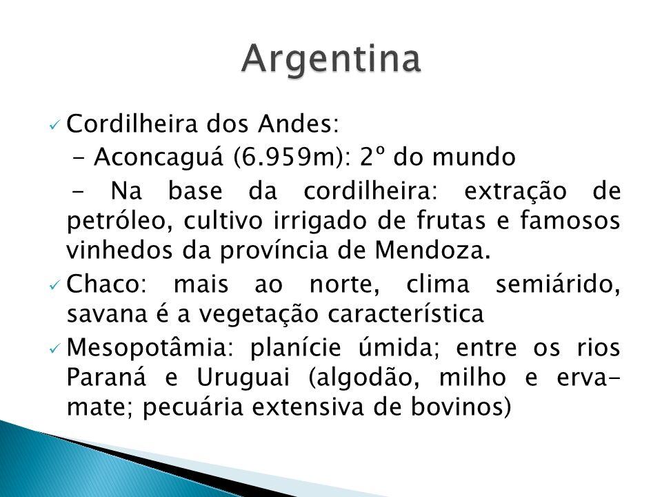 Cordilheira dos Andes: - Aconcaguá (6.959m): 2º do mundo - Na base da cordilheira: extração de petróleo, cultivo irrigado de frutas e famosos vinhedos da província de Mendoza.