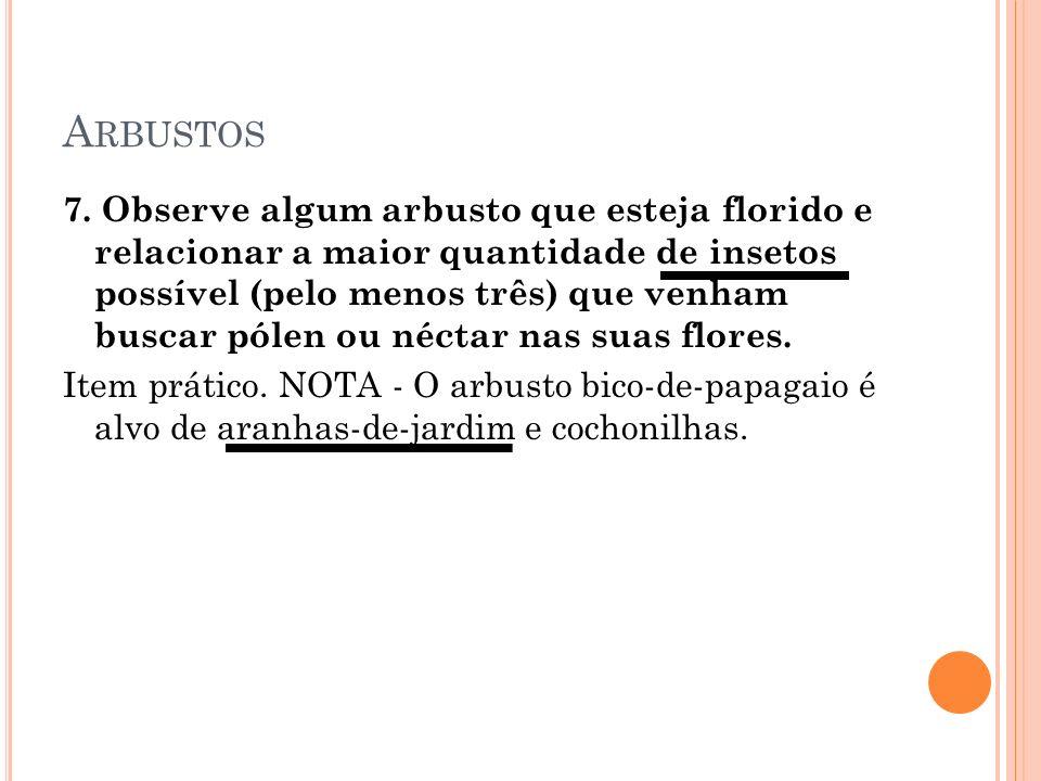 A RBUSTOS 7.