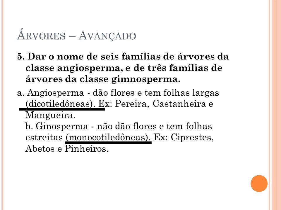 Á RVORES – A VANÇADO 5. Dar o nome de seis famílias de árvores da classe angiosperma, e de três famílias de árvores da classe gimnosperma. a. Angiospe