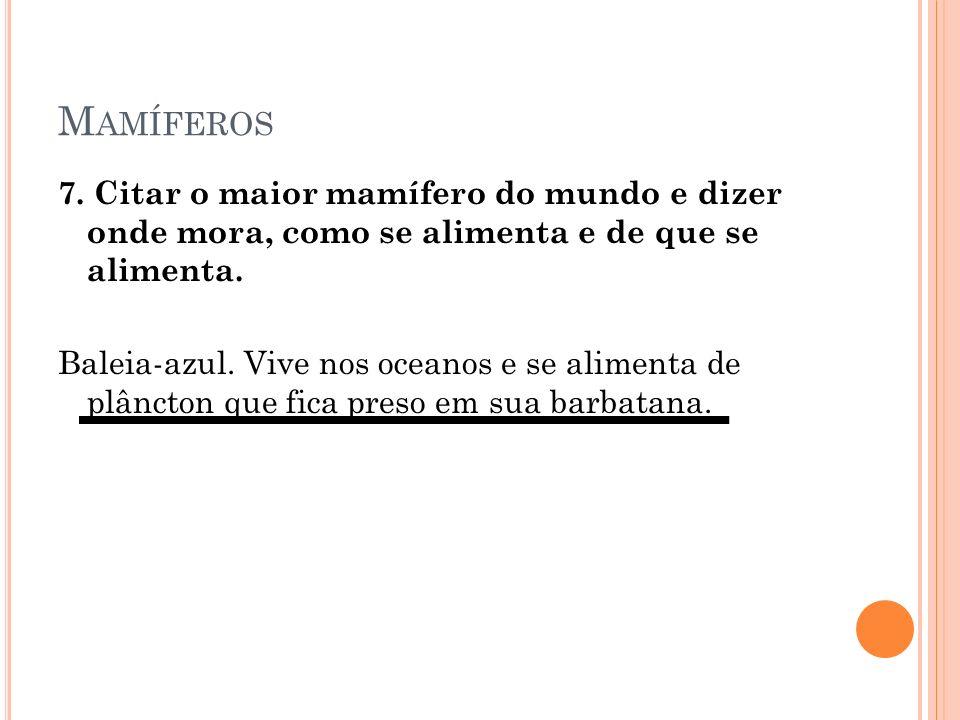 M AMÍFEROS 7.