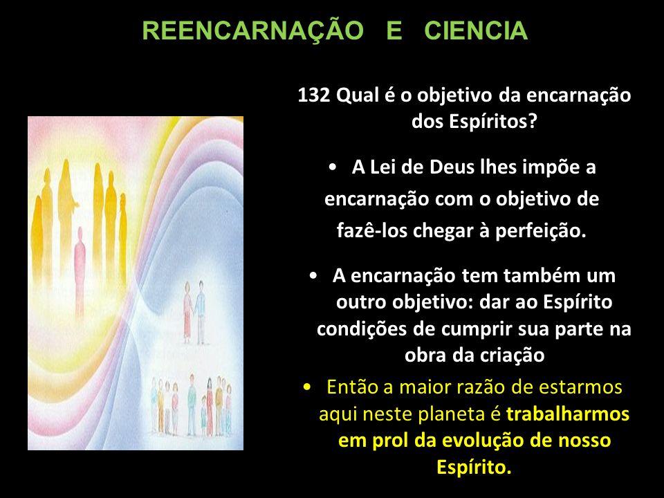 132 Qual é o objetivo da encarnação dos Espíritos.