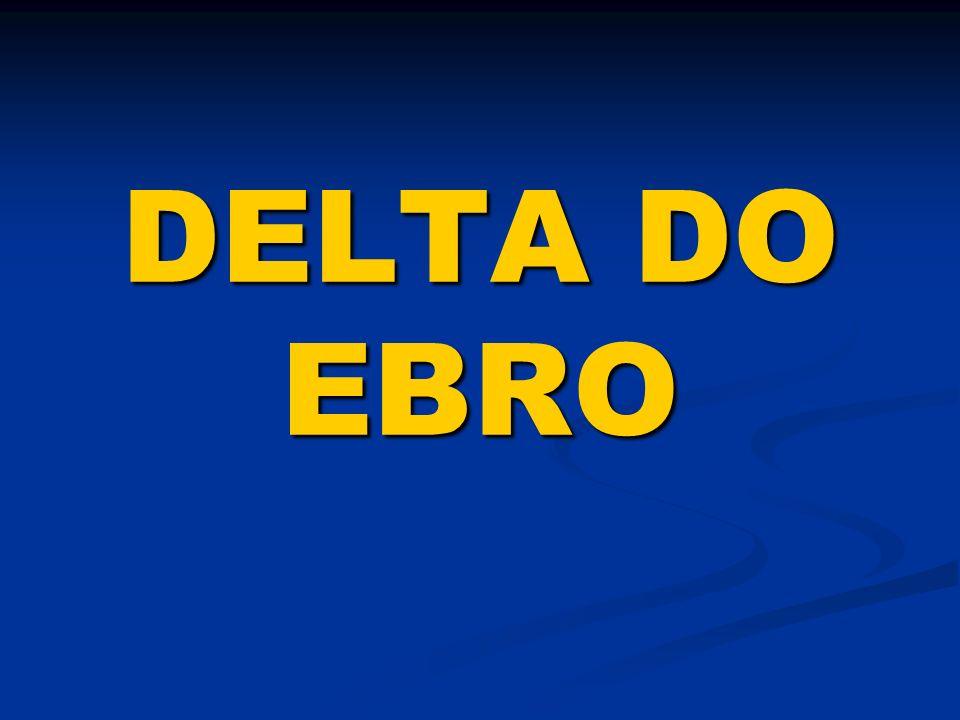 DELTA DO EBRO