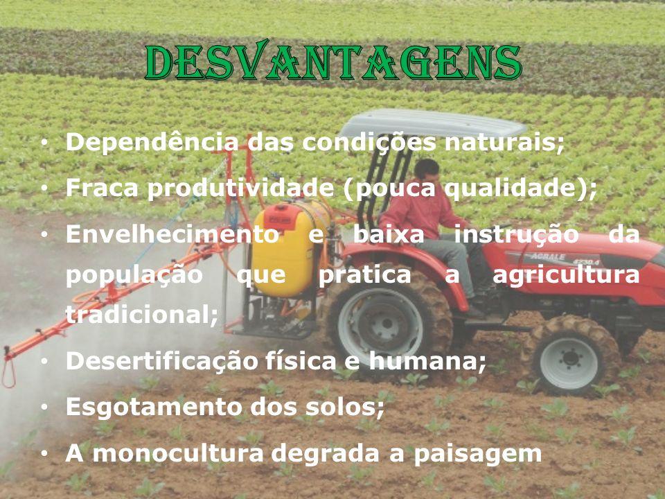 Dependência das condições naturais; Fraca produtividade (pouca qualidade); Envelhecimento e baixa instrução da população que pratica a agricultura tra