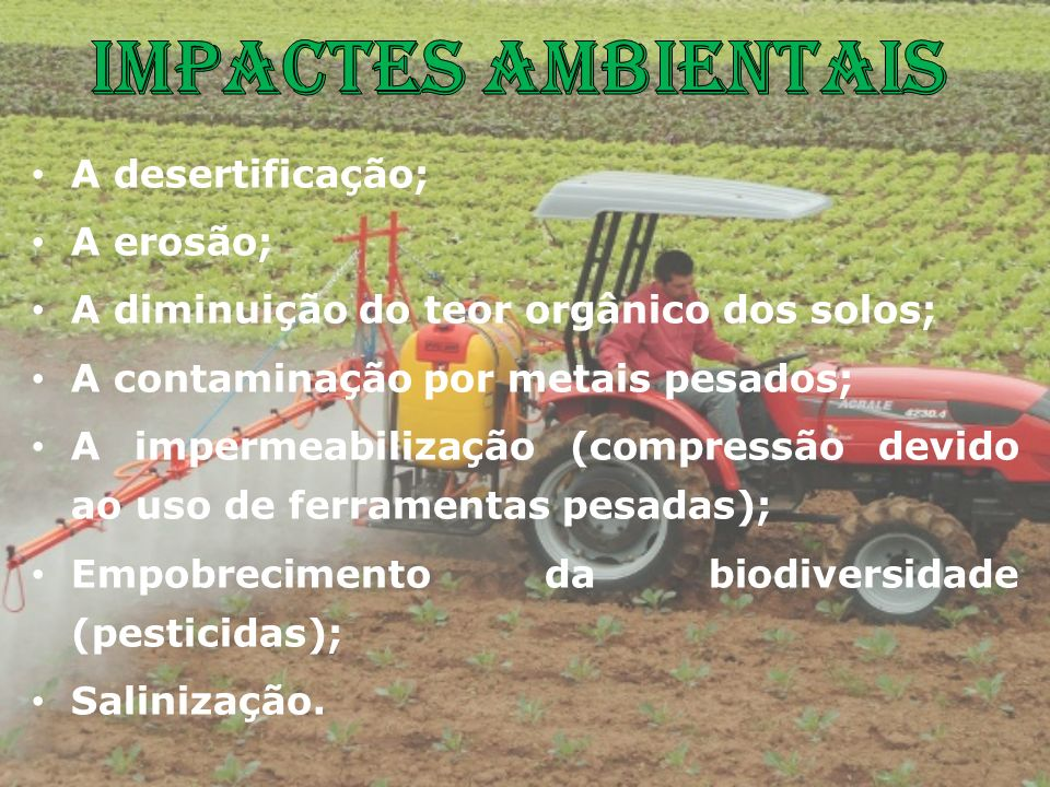 A desertificação; A erosão; A diminuição do teor orgânico dos solos; A contaminação por metais pesados; A impermeabilização (compressão devido ao uso