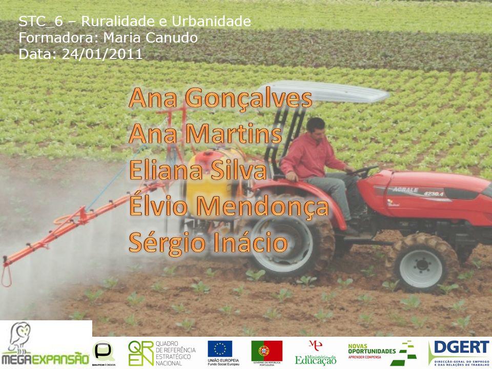 STC_6 – Ruralidade e Urbanidade Formadora: Maria Canudo Data: 24/01/2011