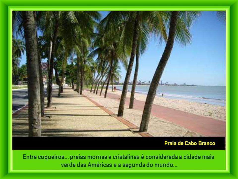 João Pessoa é a única capital do Nordeste em que é vetada a construção de arranha-céus na orla marítima. A cidade abraça extensas reservas de Mata Atl