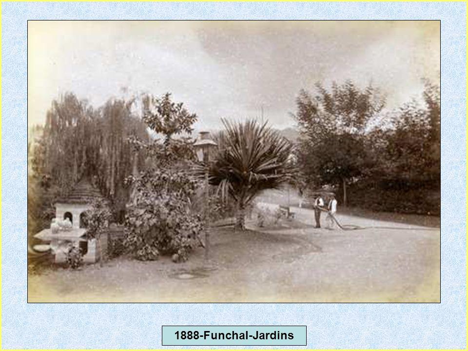 1888-Funchal-Jardins