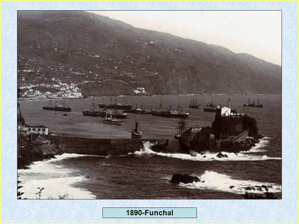 1890-Camara de Lobos