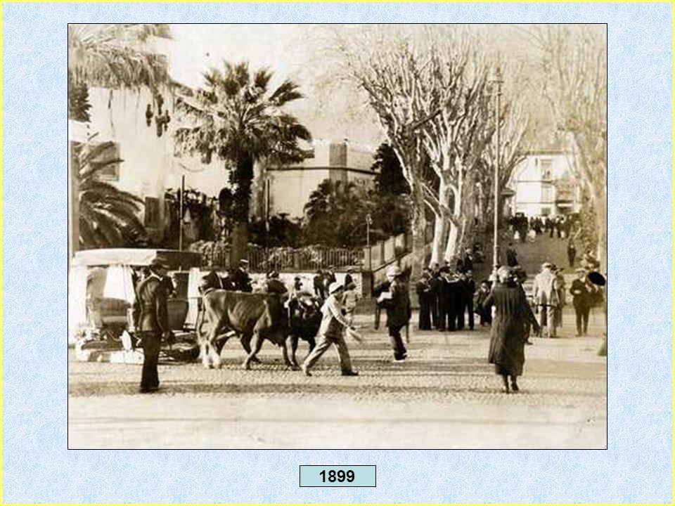 1892 - Porto do Funchal