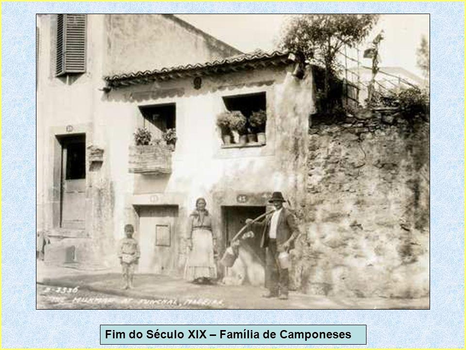 1950 View from Cabo Girão – Vista do Cabo Girão