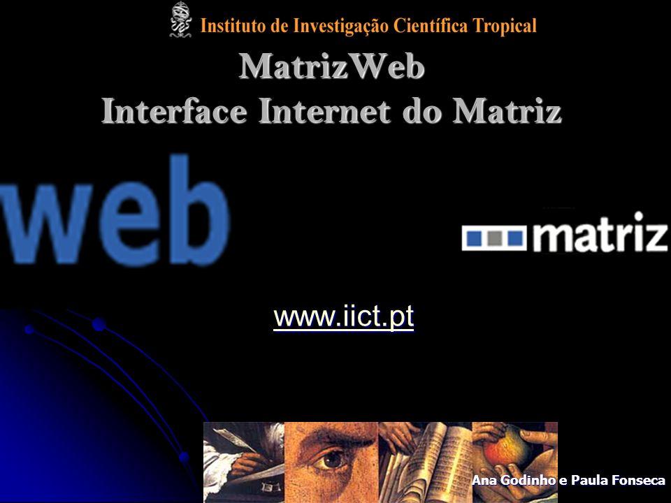 MatrizWeb Interface Internet do Matriz www.iict.pt Ana Godinho e Paula Fonseca