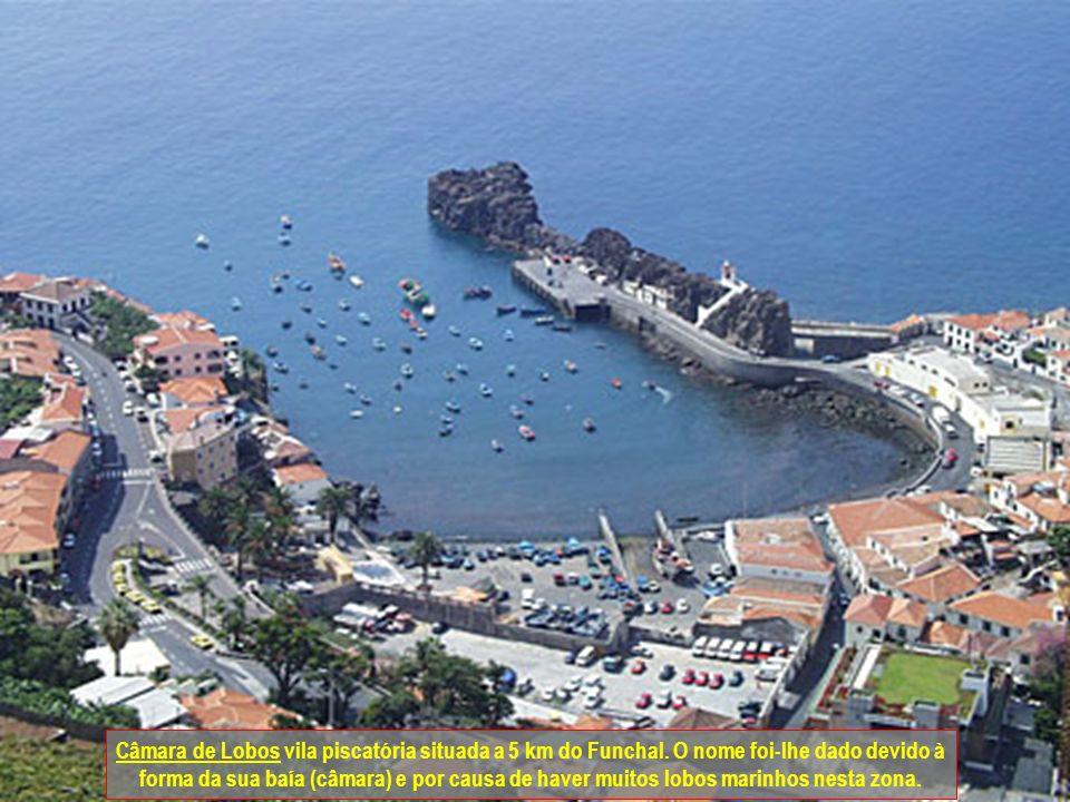 Monte (Vila) situado nas montanhas a 6 km do Funchal, é típico pelos seus carros de cesto. Eles descem (puxados por dois homens) do Monte até ao Funch