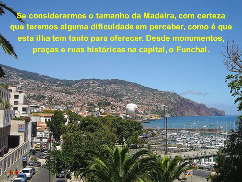 Se considerarmos o tamanho da Madeira, com certeza que teremos alguma dificuldade em perceber, como é que esta ilha tem tanto para oferecer.