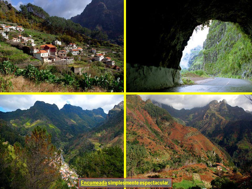 Encumeada é a ligação entre a Ribeira Brava (na Costa Sul) e São Vicente (na Costa Norte).